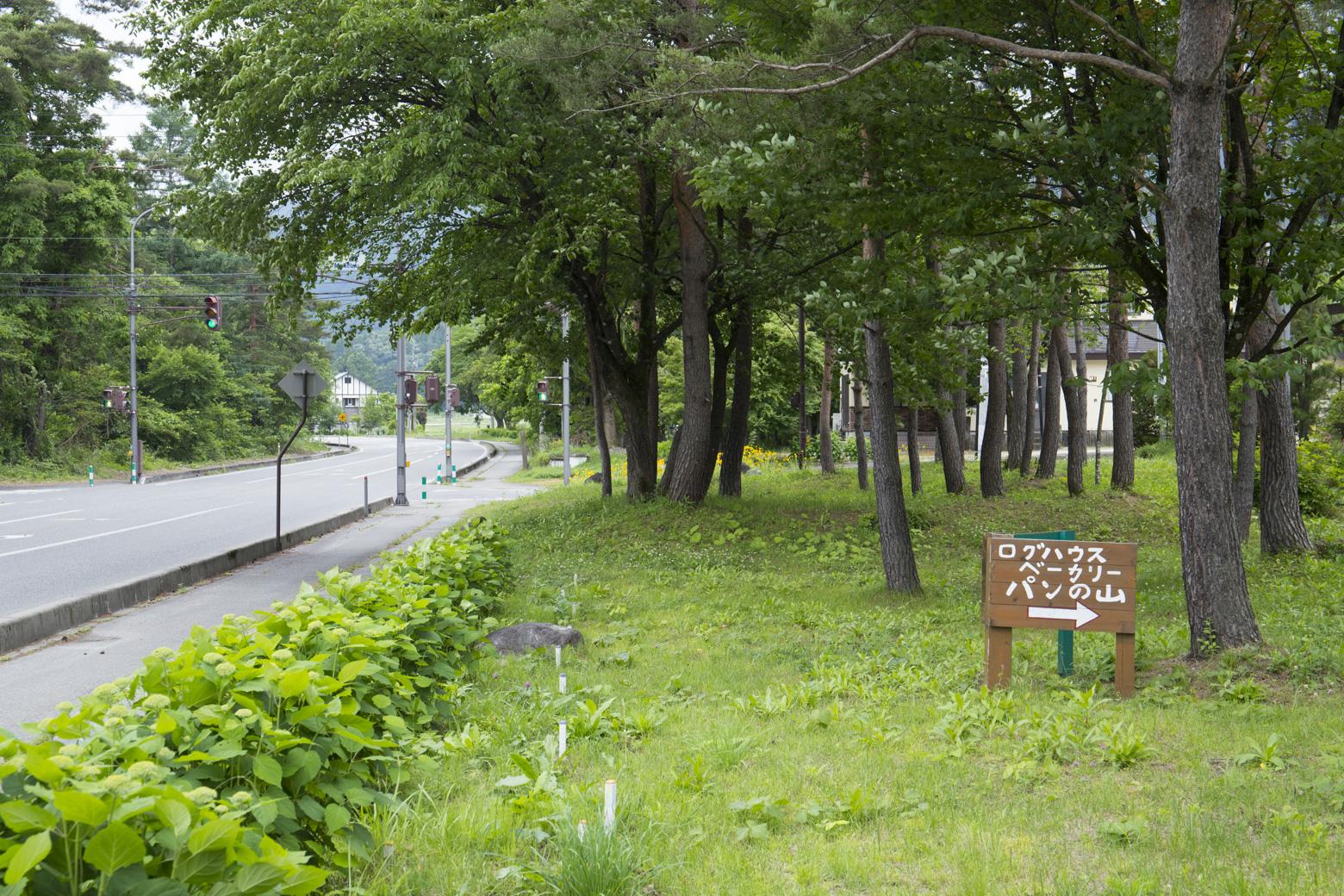 オリンピック道路沿いの店舗案内看板