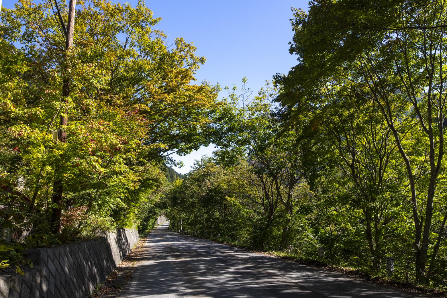 葛温泉高瀬館前の道路
