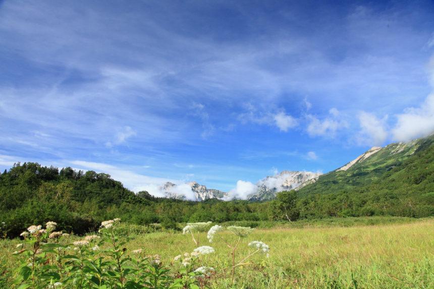 栂池自然園から見える白馬三山