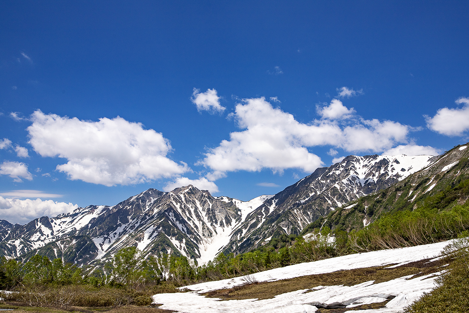 展望湿原からの白馬三山