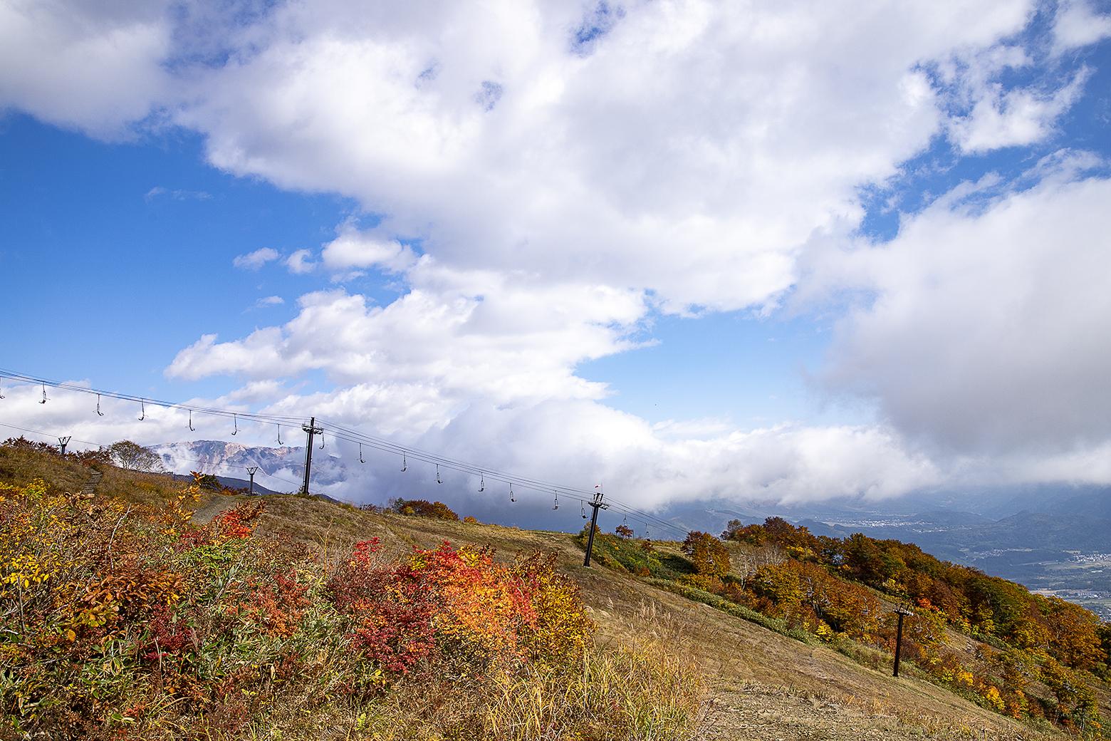 遊歩道からゲレンデ方面の景色