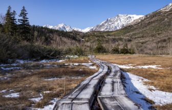雪が積もった木道